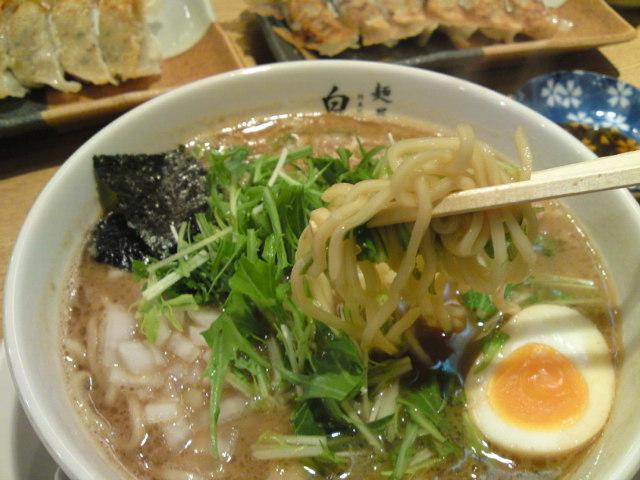 おさらい!「白神」(食べ歩き/関市)