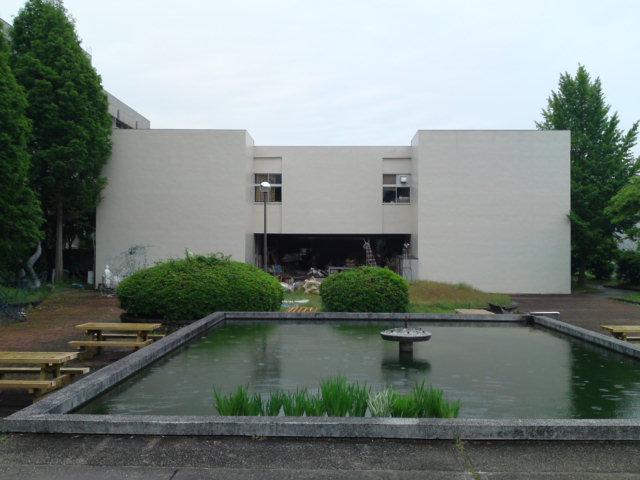 黄色いカキツバタ(刈谷市)
