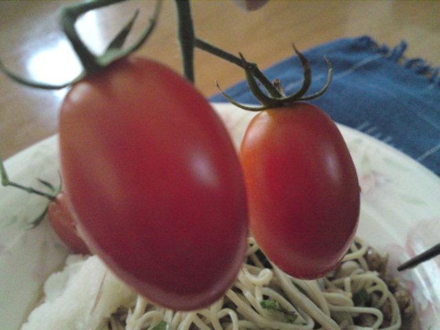 頂いたトマトで…(家メシ)