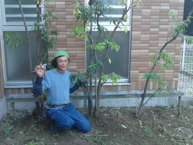 """芳芽苑(ほうがえん)の""""お庭やケンちゃん""""が来た。"""