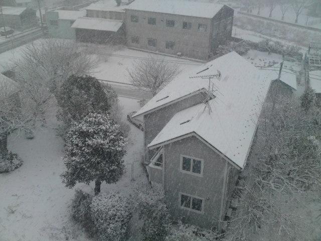 大雪降ってヘルシー、オイシー!?(家メシ)